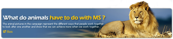What do animals have to do with MS?